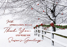 Winter Wishes Holiday Cards